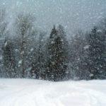 Cae nieve en Wordpress.com!
