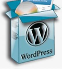 Por qué es WordPress 2.7 y no WordPress 3.0