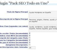 Guía All in one SEO pack – Configuración