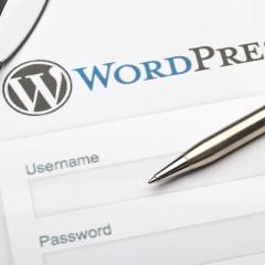 Como acceder a la administración de WordPress