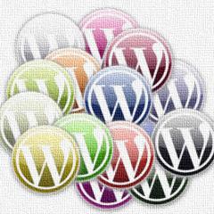 WordPress se traducirá a las 11 lenguas oficiales de Sudáfrica