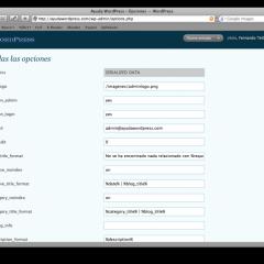 Accede a todas las opciones de WordPress