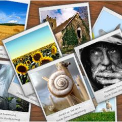 Galería de imágenes en themes antiguos