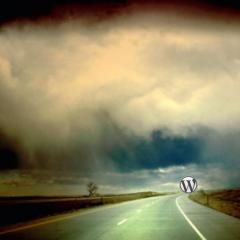Caracteristicas que debería incluir WordPress 3.0