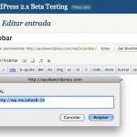 Acortador de WordPress con el plugin de estadísticas