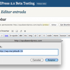 Acortador de WordPress con el plugin de estadísticas