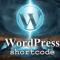 Embedder documentos con enlace para descargar con shortcode
