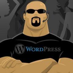 ¿Qué son las claves secretas de WordPress y para qué sirven?