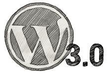 Primeros fallos detectados al actualizar a WordPress 3.0
