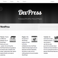 DevPress, el dream team de WordPress