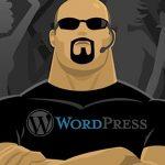 Quitar los mensajes de error de WordPress