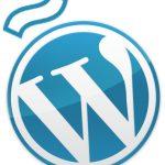 WordCamp Spain 2010 ¡Voy!