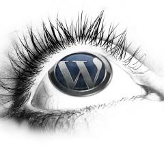 WordPress es el CMS del presente y del futuro