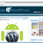 Ayuda WordPress 2.0