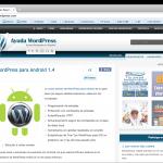 Ayuda WordPress 3.0