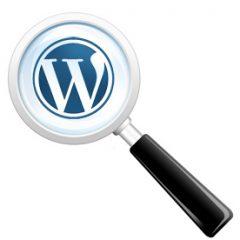 Incluir tipos de entrada personalizados en el buscador de WordPress