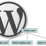 Activar temas solo para un sitio (multisitio)