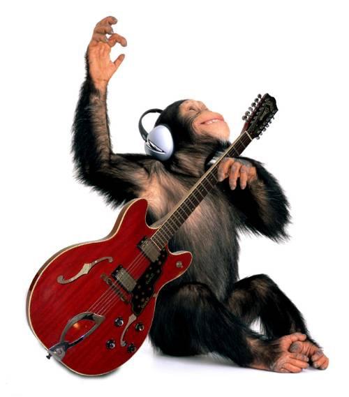 mono rockero