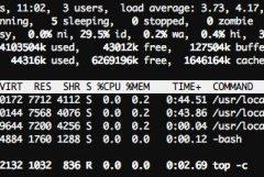 Guías de rendimiento y optimización para WordPress