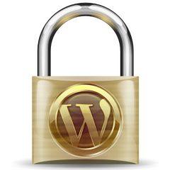 15 maneras de asegurar WordPress