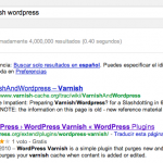 Rich Snippets en WordPress
