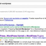 Rich Snippets en WordPress