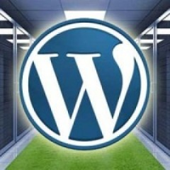 Guia: ¿Contratar un buen hosting WordPress?