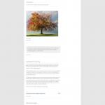 Twenty Twelve blog