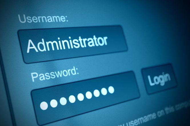 ¡Alerta de seguridad!: Ataque organizado a sitios WordPress a través de plugins