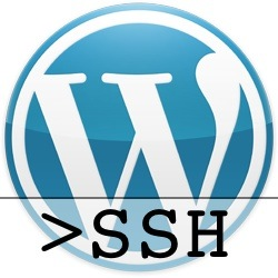 Actualizar WordPress por SSH