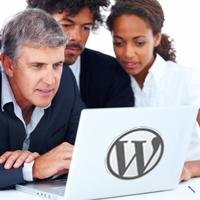 Comprueba si tu tema WordPress cumple los estándares