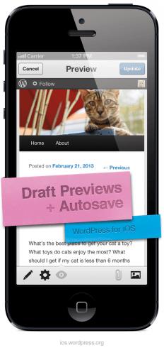 wordpress ios 3.5