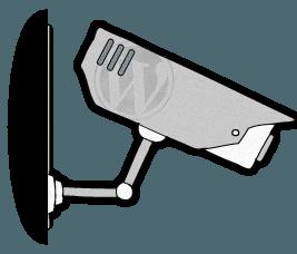 ¿Es mejor WordPress Multisitio o los servicios de gestión remota?
