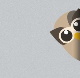 Hootsuite en WordPress