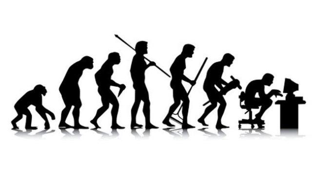 evolucion-wp