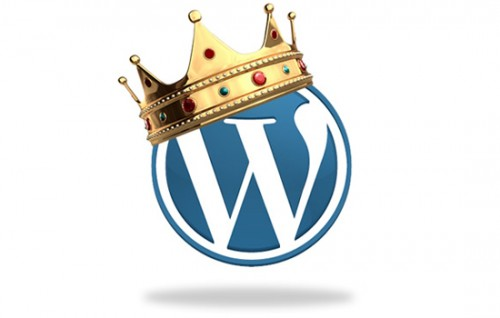 rey wordpress