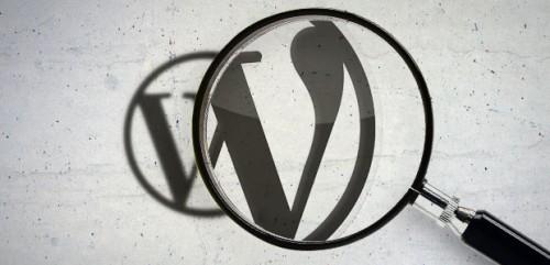buscador avanzado wordpress