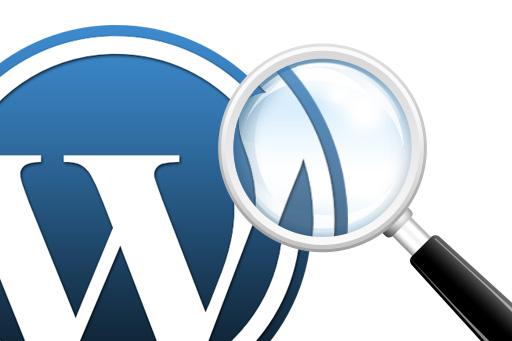 Ajustes avanzados de búsqueda en WordPress