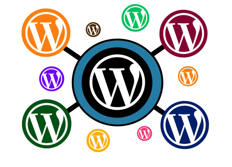 El plugin imprescindible para WordPress multisitio