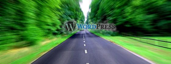 velocidad wordpress