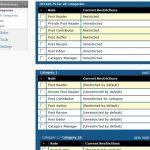 captura de ajustes de Categorías por usuario en plugin role scoper