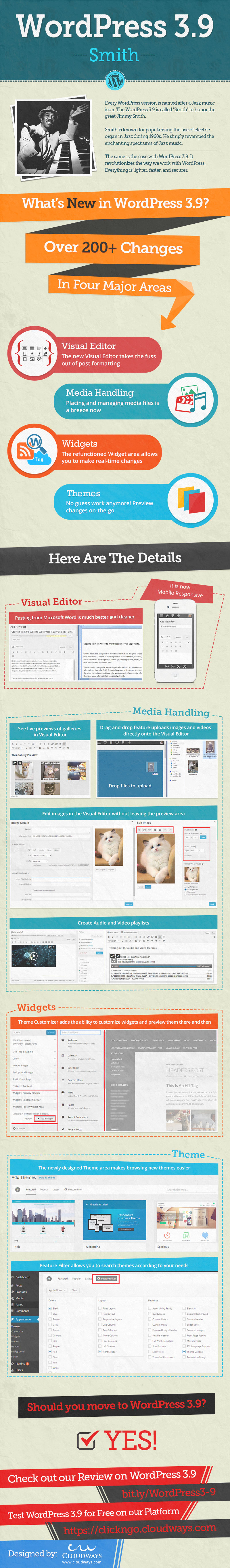 infografia wordpress 39