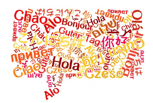detectar idioma wordpress
