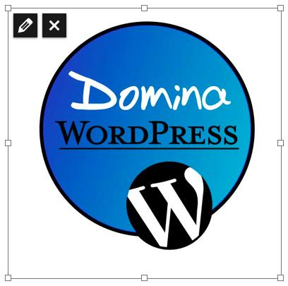 icono editar imagen wordpress 3.9