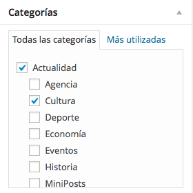 categorias wordpress casillas selección