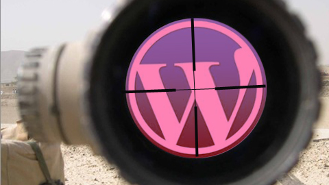 wordpress en la diana