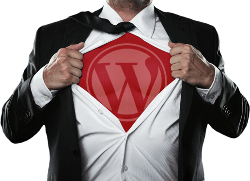 experto wordpress