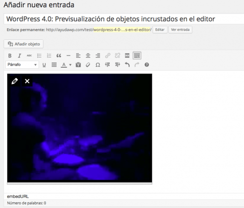 previsualizar objeto incrustado editor WordPress 4.0
