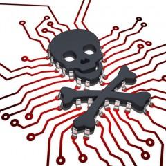 Grave vulnerabilidad que afecta a plugins y temas WordPress