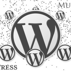 Plugins imprescindibles para WordPress Multisitio